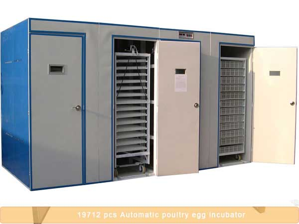 19712 pcs automatic poultry egg incubator